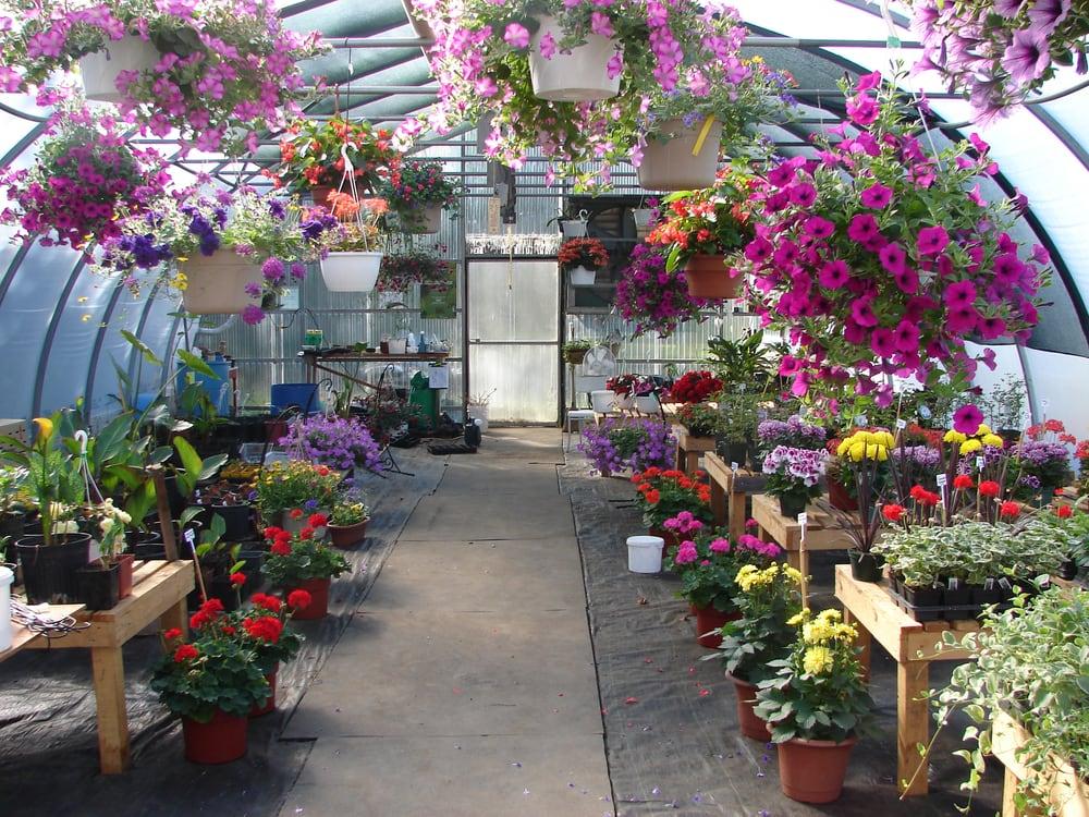 Eco Gardens Nurseries Gardening 6821 Glendon Drive