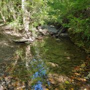 Photo of French Park - Cincinnati, OH, United States. Larger area of water in the creek bed