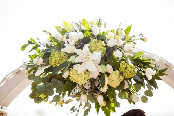 Blossoms 46 Photos 38 Reviews