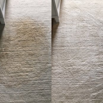 Coffee stain removal from a wool