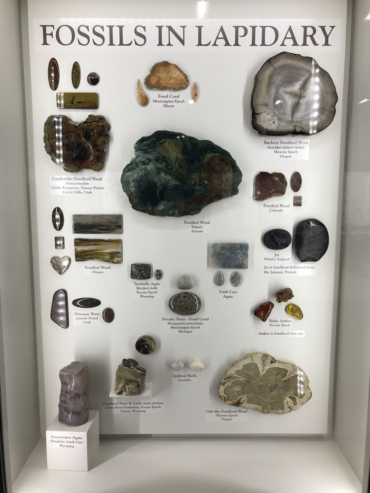 Photo of Lizzadro Museum of Lapidary Art - Oak Brook, IL, United States