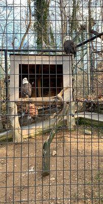 Photo of Brandywine Zoo - Wilmington, DE, US.