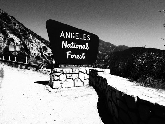 Photo of Angeles Crest Highway - La Canada, CA, US. Playing around with my Olympus camera filters :)