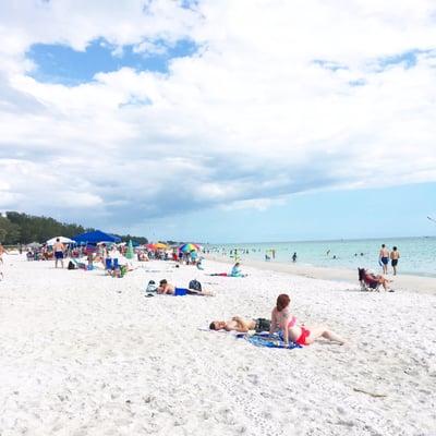 Anna Maria Beach 111 Photos 38