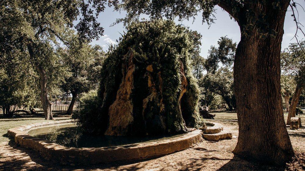 SAN PEDRO SPRINGS PARK - 148 Photos & 40 Reviews - Parks ...