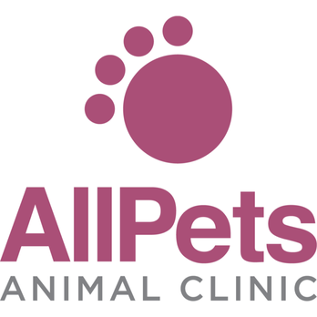 All Pets Animal Clinic Veterinarians 1420 Lake St Spirit Lake