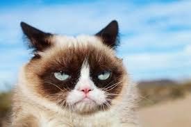 Grumpy C.