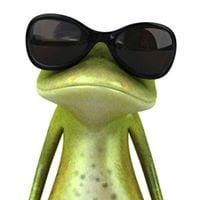 Froggylover 6.