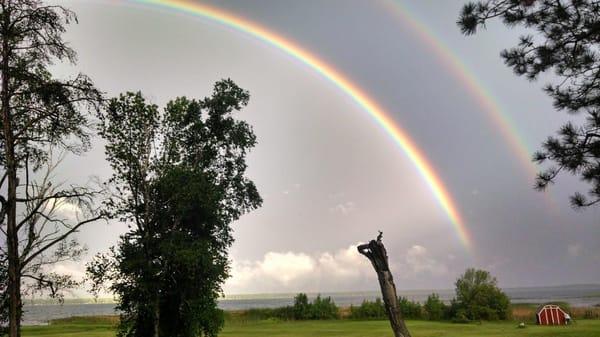 Rainbow C.