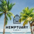 Hemptuary H. Avatar
