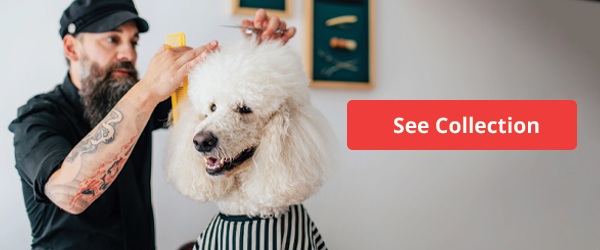 Find dog groomers and more with this Collection